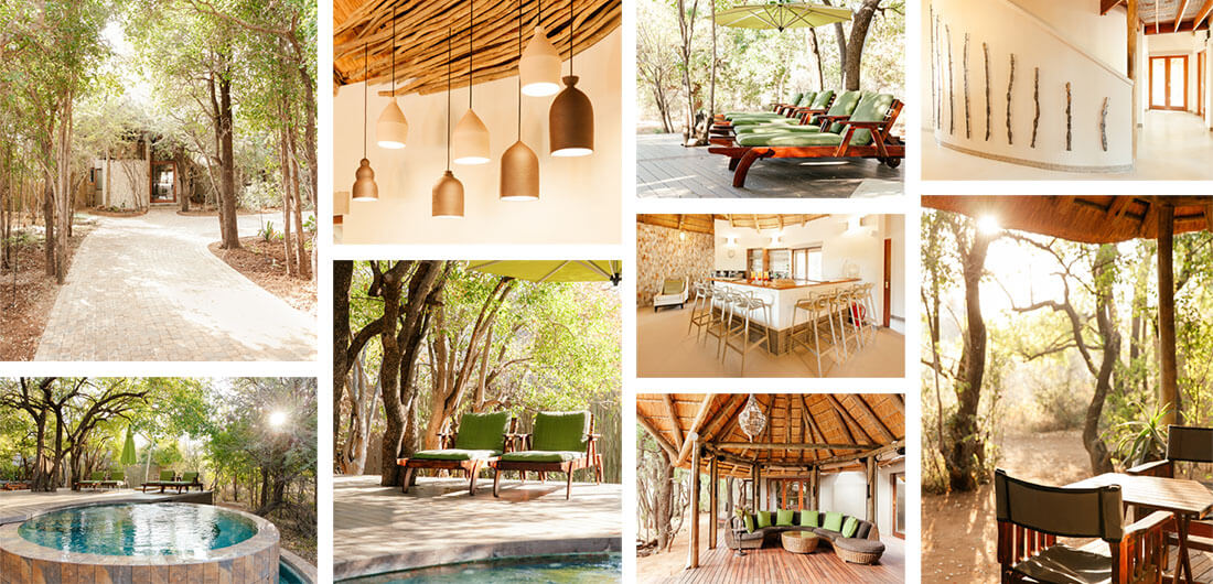 Luxury Game Lodge Accommodation